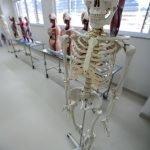 Laboratório de aula prática dos cursos da Saúde