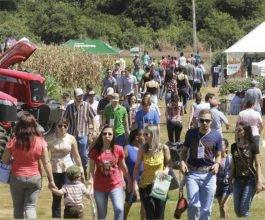 XIV Dia de Campo da Unicesumar reúne mais de 4 mil pessoas