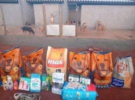 UniCesumar arrecada alimentos para ONGs que cuidam de animais