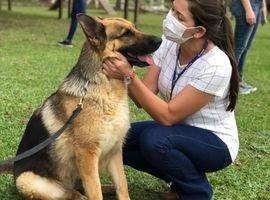 Alunos da UniCesumar Curitiba  visitam veterinária do Forte Pinheirinho